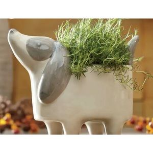 Handcrafted Indoor Ceramic Dog Planter Pot